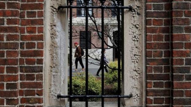 Bộ GD-ĐT lên tiếng về việc sinh viên Việt Nam có thể bị trục xuất khỏi Mỹ do quy định mới về thị thực - Ảnh 1.