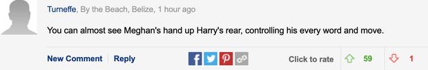 Xuất hiện cùng vợ và đưa ra nhận xét động chạm Nữ hoàng, Harry khiến người hâm mộ và cả các chuyên gia phải choáng váng - Ảnh 2.