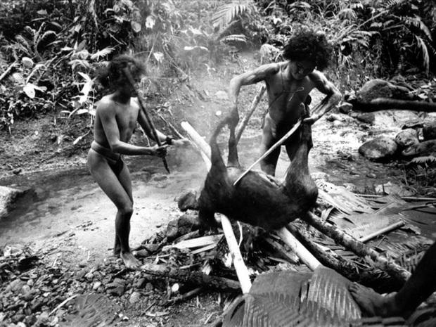 Chuyện về bộ lạc man rợ sống trong hang núi Tasaday và cú lừa ngoạn mục khiến cả thế giới tin sái cổ - Ảnh 5.