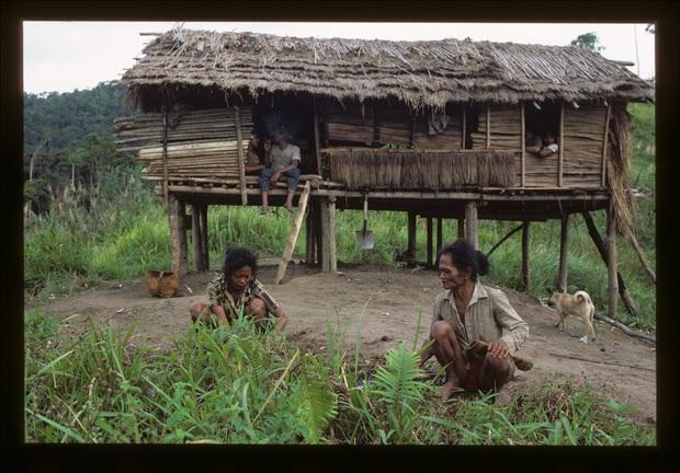 Chuyện về bộ lạc man rợ sống trong hang núi Tasaday và cú lừa ngoạn mục khiến cả thế giới tin sái cổ - Ảnh 10.