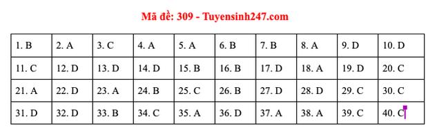 Đáp án đề thi môn Lịch sử tốt nghiệp THPT Quốc gia 2020 (24 mã đề) - Ảnh 3.