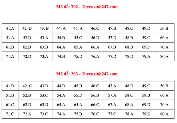 Đáp án đề thi môn Hóa tốt nghiệp THPT Quốc gia 2020 (24 mã đề) - Ảnh 2.
