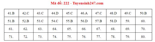 Đáp án đề thi môn Hóa tốt nghiệp THPT Quốc gia 2020 (24 mã đề) - Ảnh 13.