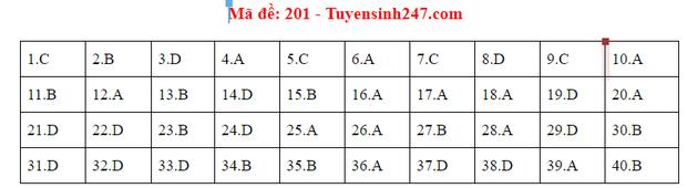 Đáp án đề thi tốt nghiệp THPT Quốc gia 2020 môn Vật lý (24 mã đề) - Ảnh 1.