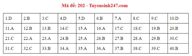 Đáp án đề thi tốt nghiệp THPT Quốc gia 2020 môn Vật lý (24 mã đề) - Ảnh 2.