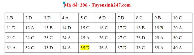 Đáp án đề thi tốt nghiệp THPT Quốc gia 2020 môn Vật lý (24 mã đề) - Ảnh 4.