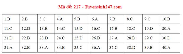 Đáp án đề thi tốt nghiệp THPT Quốc gia 2020 môn Vật lý (24 mã đề) - Ảnh 12.