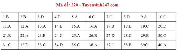 Đáp án đề thi tốt nghiệp THPT Quốc gia 2020 môn Vật lý (24 mã đề) - Ảnh 14.