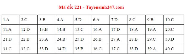 Đáp án đề thi tốt nghiệp THPT Quốc gia 2020 môn Vật lý (24 mã đề) - Ảnh 9.