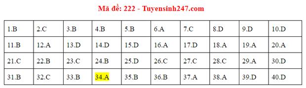 Đáp án đề thi tốt nghiệp THPT Quốc gia 2020 môn Vật lý (24 mã đề) - Ảnh 10.