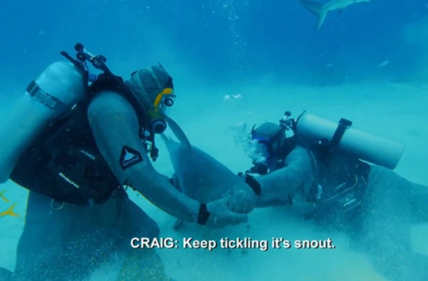 Tay đấm thép Mike Tyson hạ đo ván cá mập trong trận đấu diễn ra dưới đáy biển, thừa nhận: Tôi đã sợ hết hồn - Ảnh 4.