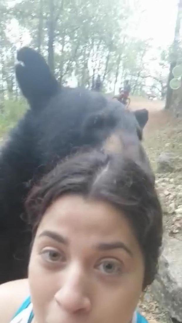 Gấu đen bị thiến sau khi vô tư đụng chạm nữ du khách trẻ - Ảnh 2.