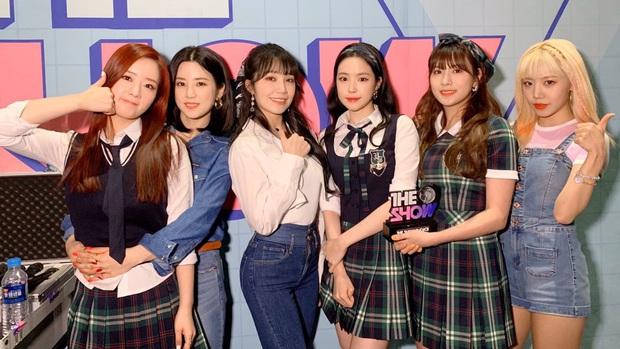16 nghệ sĩ Kpop ẵm nhiều cúp trên show âm nhạc nhất: BTS thua cả TWICE, BLACKPINK lập kỷ lục nhóm nữ năm 2020 nhưng vắng mặt - Ảnh 3.