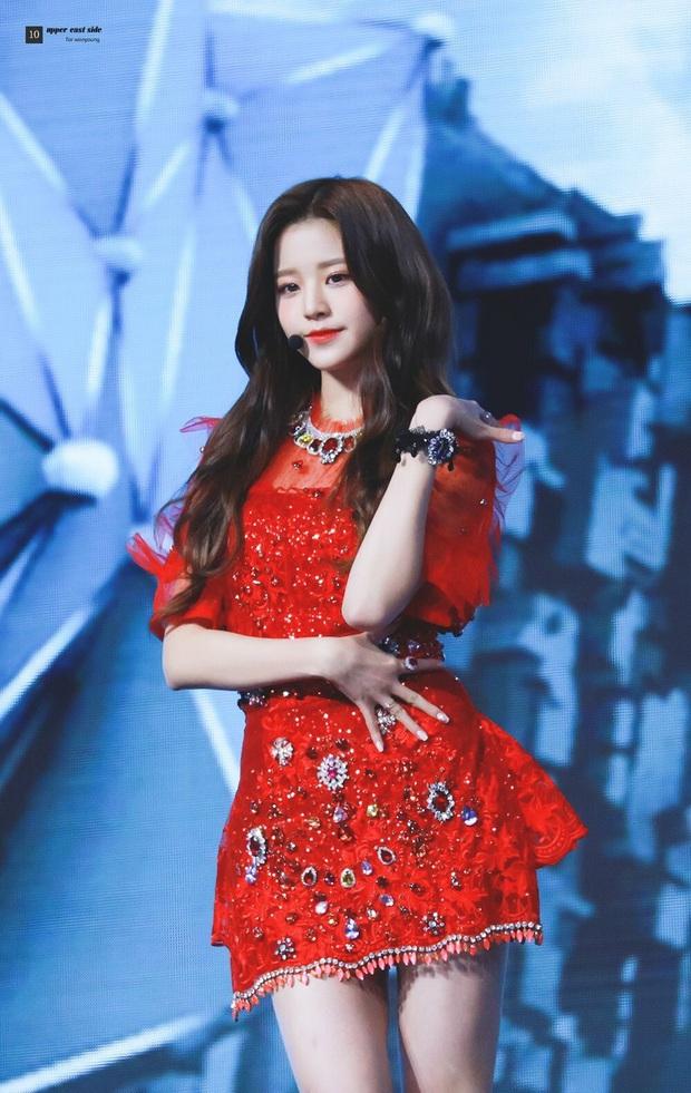 13 idol Kpop đủ tố chất thành Hoa hậu Hàn Quốc: Giữa dàn nữ thần BLACKPINK, SNSD xuất hiện đàn chị gạo cội - Ảnh 17.