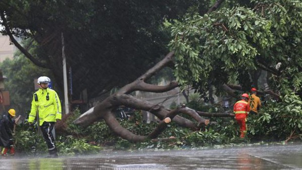 Bão Mekkhala đổ bộ tỉnh Phúc Kiến, Trung Quốc phát cảnh báo mưa bão kép - Ảnh 1.