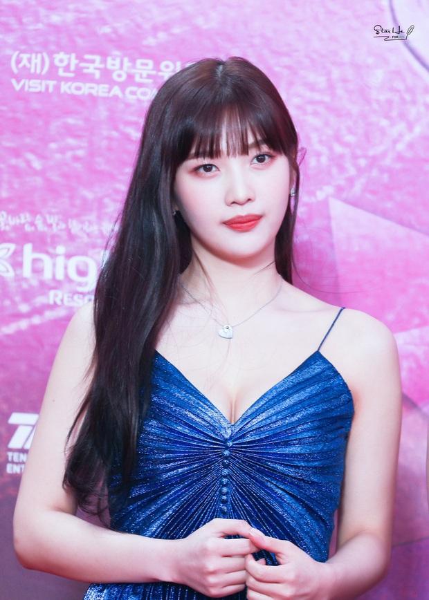 13 idol Kpop đủ tố chất thành Hoa hậu Hàn Quốc: Giữa dàn nữ thần BLACKPINK, SNSD xuất hiện đàn chị gạo cội - Ảnh 9.