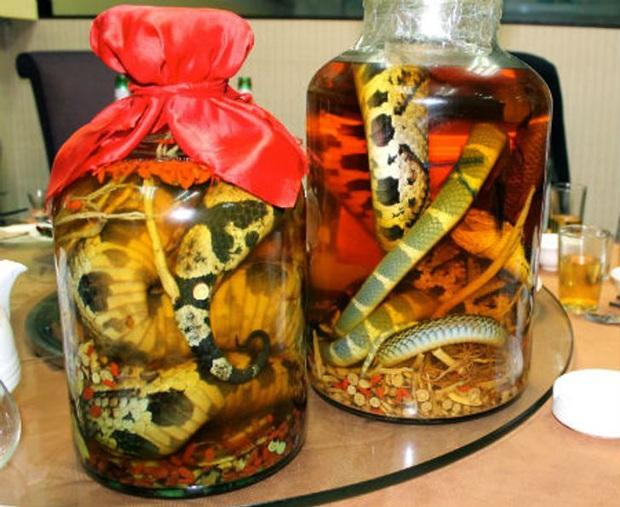 """10 loại đồ uống truyền thống """"kinh dị"""" nhất trên thế giới, Việt Nam cũng có món rượu rắn khiến không ít người sợ hãi - Ảnh 2."""