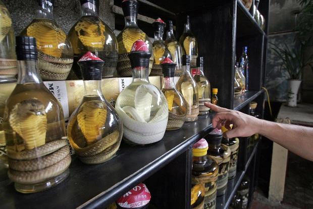 """10 loại đồ uống truyền thống """"kinh dị"""" nhất trên thế giới, Việt Nam cũng có món rượu rắn khiến không ít người sợ hãi - Ảnh 1."""