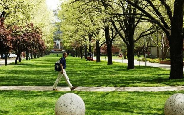 Sinh viên quốc tế có khả năng quay lại Australia vào giữa năm 2021 - Ảnh 1.