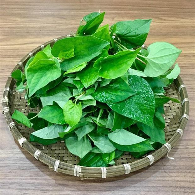 """Những loại rau chia người Việt thành 2 phe rõ rệt, đa phần bị """"xa lánh"""" vì mùi hương khó ngửi - Ảnh 7."""