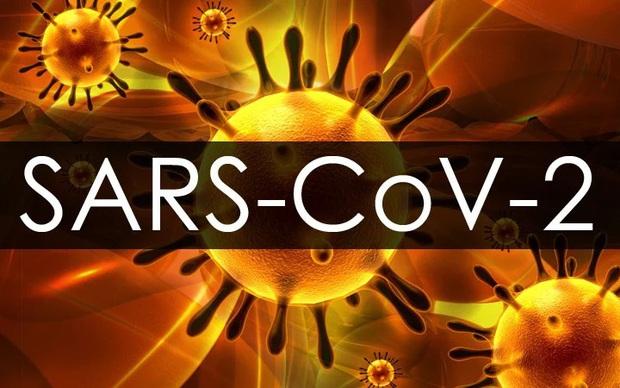 Cập nhật Covid-19: Thế giới hơn 21,3 triệu ca mắc, Mỹ nhiều ca tử vong - Ảnh 1.