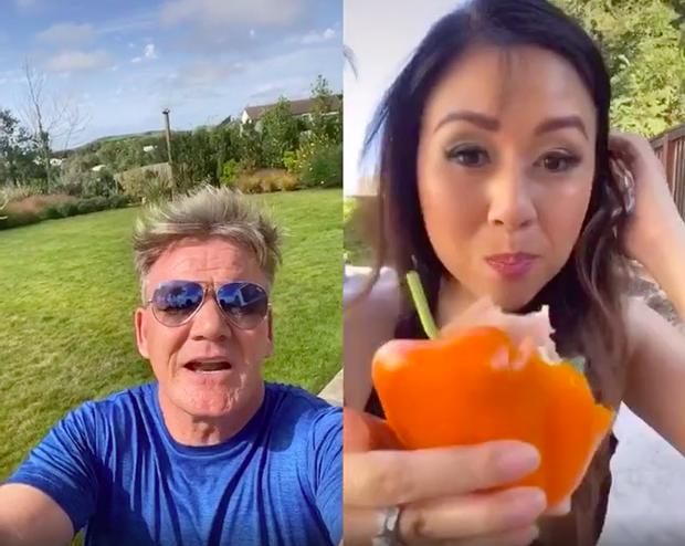 Blogger ẩm thực gốc Việt bị Gordon Ramsay chỉ trích vì làm món sandwich ớt chuông ngu ngốc, người trong cuộc phản ứng ra sao? - Ảnh 5.
