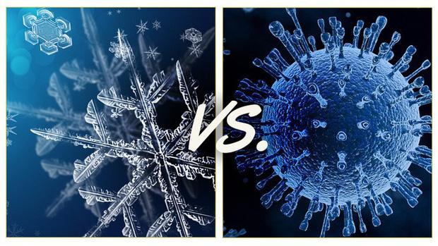 Chuyên gia giải thích: Bạn có thể nhiễm COVID-19 từ thực phẩm đông lạnh hay không? - Ảnh 3.