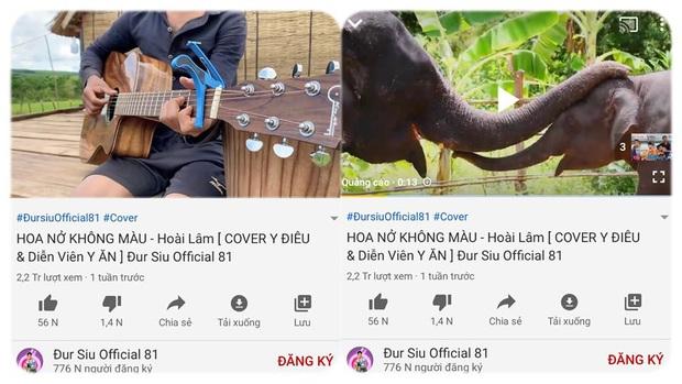 Cha đẻ ca khúc Hoa Nở Không Màu của Hoài Lâm công khai cảnh cáo, gắn cờ kênh YouTube vi phạm bản quyền trắng trợn - Ảnh 2.
