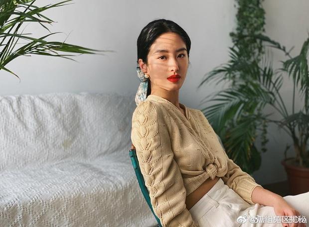 Người tình của cha nuôi Lưu Diệc Phi: Nhan sắc chẳng kém thần tiên tỷ tỷ, style đẹp như gái Pháp khiến dân tình mê mẩn - Ảnh 17.