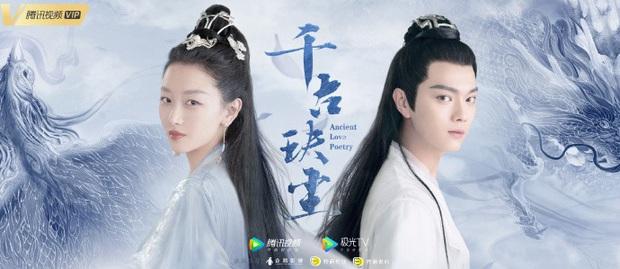Phim mới của ảnh hậu Châu Đông Vũ tung poster, netizen la ó: Hứa Khải còn xinh hơn cả nữ chính vậy? - Ảnh 3.