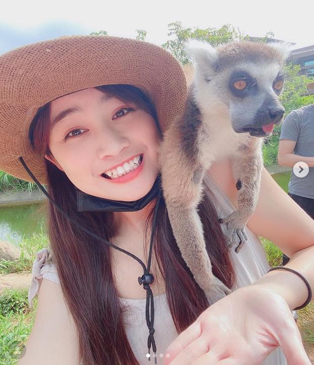Đi sở thú làm vlog, cô nàng YouTuber bất ngờ bị vượn sàm sỡ ngay trên sóng - Ảnh 3.
