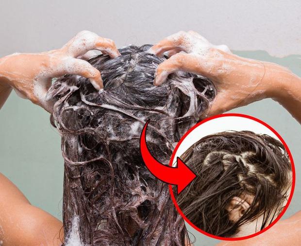 5 lỗi sai kinh điển khi gội đầu mà rất nhiều cô nàng đều mắc phải khiến mái tóc ngày càng khô xơ, kém bóng mượt - Ảnh 3.