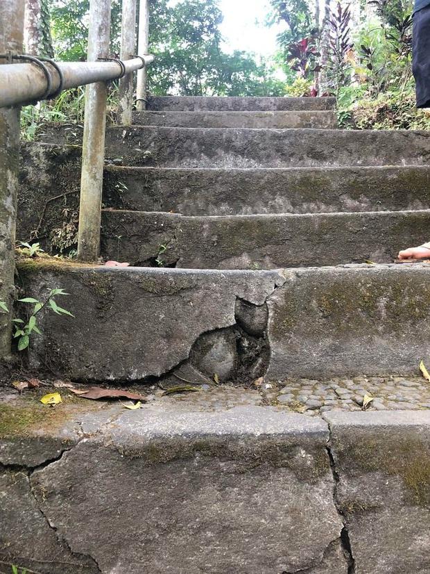 Khi con người bị yêu hoàng thượng quá mức, nhìn đâu cũng thấy thần mèo hiển linh - Ảnh 5.
