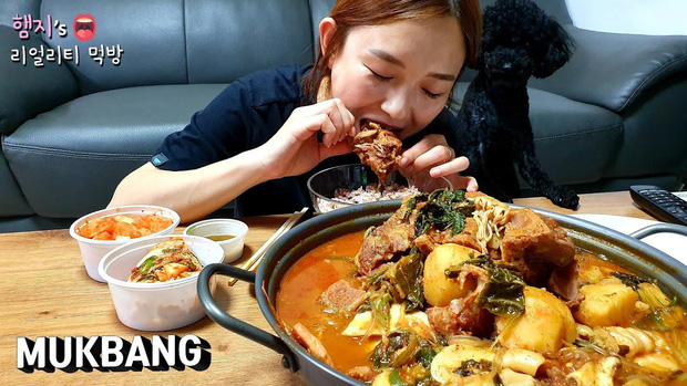 Sau khi bị tố lừa dối, hàng loạt YouTuber Hàn Quốc lao đao, có người đã phải bỏ nghề vì sức ép dư luận - Ảnh 3.