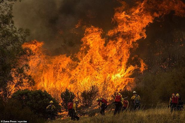 California hóa Hỏa Diệm Sơn vì cháy rừng, dân liều mình lái xe lao qua biển lửa - Ảnh 2.