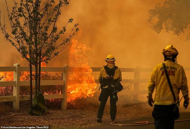 California hóa Hỏa Diệm Sơn vì cháy rừng, dân liều mình lái xe lao qua biển lửa - Ảnh 11.