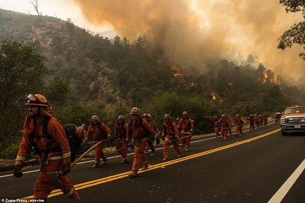 California hóa Hỏa Diệm Sơn vì cháy rừng, dân liều mình lái xe lao qua biển lửa - Ảnh 12.