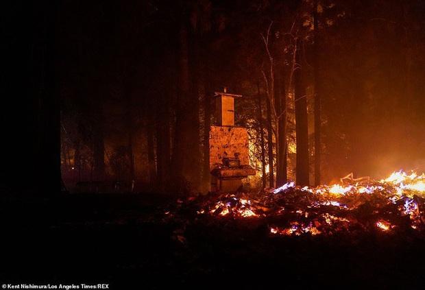 California hóa Hỏa Diệm Sơn vì cháy rừng, dân liều mình lái xe lao qua biển lửa - Ảnh 3.