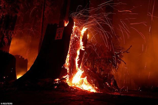California hóa Hỏa Diệm Sơn vì cháy rừng, dân liều mình lái xe lao qua biển lửa - Ảnh 5.