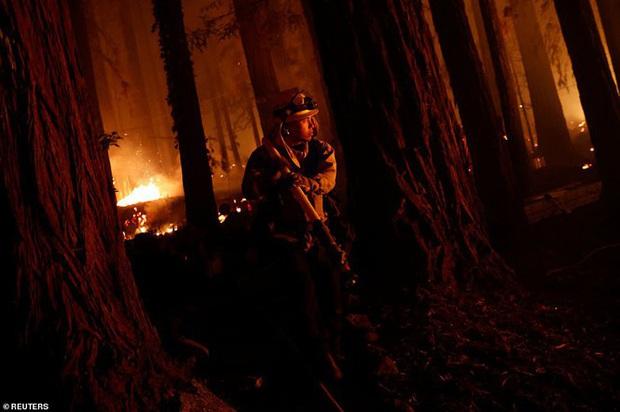 California hóa Hỏa Diệm Sơn vì cháy rừng, dân liều mình lái xe lao qua biển lửa - Ảnh 9.