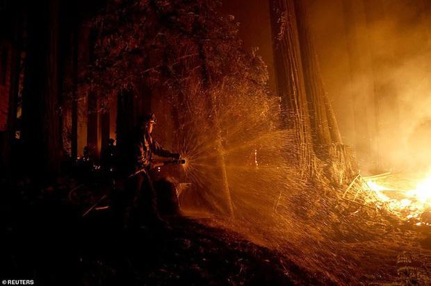 California hóa Hỏa Diệm Sơn vì cháy rừng, dân liều mình lái xe lao qua biển lửa - Ảnh 10.
