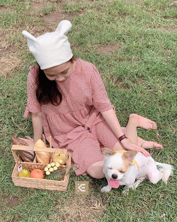 Hội nghiện nhà xứ Hàn decor đẹp thế là nhờ đồ mây tre đan xinh xẻo, ở Việt Nam lại bán đầy nên bắt chước cực dễ - Ảnh 4.