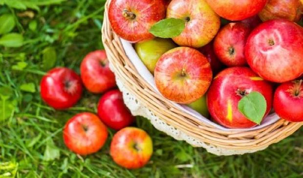 Ăn táo bao lâu nay nhưng chưa chắc bạn biết bí mật thú vị này: Lớp màu trắng bên ngoài vỏ quả thực chất là gì? - Ảnh 2.