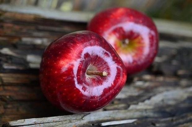 Ăn táo bao lâu nay nhưng chưa chắc bạn biết bí mật thú vị này: Lớp màu trắng bên ngoài vỏ quả thực chất là gì? - Ảnh 4.