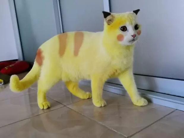 Boss bỗng hóa vàng khè như Pikachu sau khi được sen trị nấm bằng liệu pháp đặc biệt, dân mạng được một trận cười nghiêng ngả - Ảnh 3.