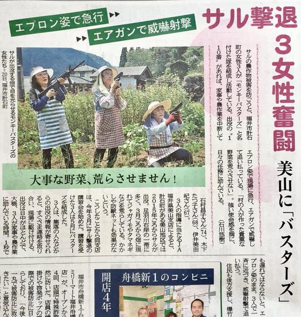Ba cụ bà Nhật Bản lập nhóm vũ trang, dùng súng hơi quyết khô máu với băng cướp khỉ núi - Ảnh 2.