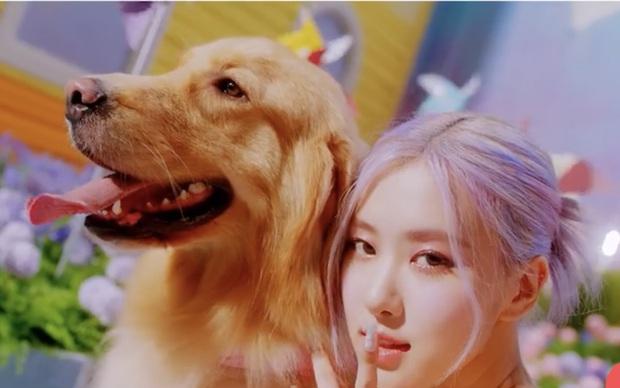 Cả một bữa tiệc visual xinh tươi trong Ice Cream, nhưng Jisoo (BLACKPINK) mới là người leo trending cao nhất vì... vô hình trong MV! - Ảnh 26.