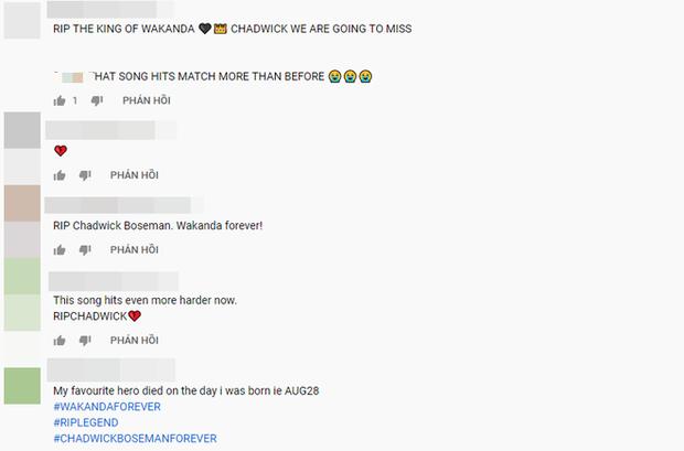 Netizen để lại bình luận dưới MV nhạc phim Black Panther bày tỏ thương tiếc tài tử Chadwick Boseman: Vĩnh biệt nhà Vua Wakanda! - Ảnh 5.
