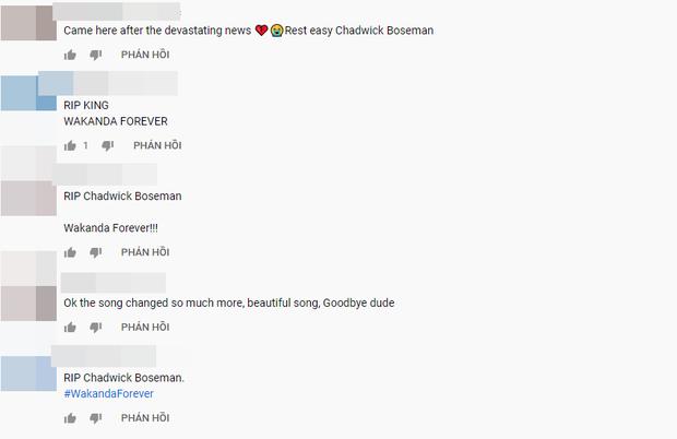 Netizen để lại bình luận dưới MV nhạc phim Black Panther bày tỏ thương tiếc tài tử Chadwick Boseman: Vĩnh biệt nhà Vua Wakanda! - Ảnh 4.