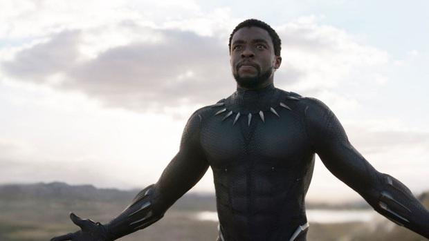Black Panther Chadwick Boseman: Từ cậu bé bị xa lánh vì màu da đến hành trình  xoá nhoà ranh giới sắc tộc - Ảnh 4.